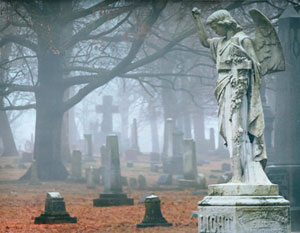 Woodland Cemetery photo
